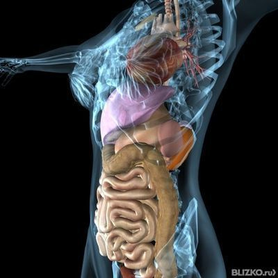 Компьютерная томография брюшной полости в екатеринбурге цены